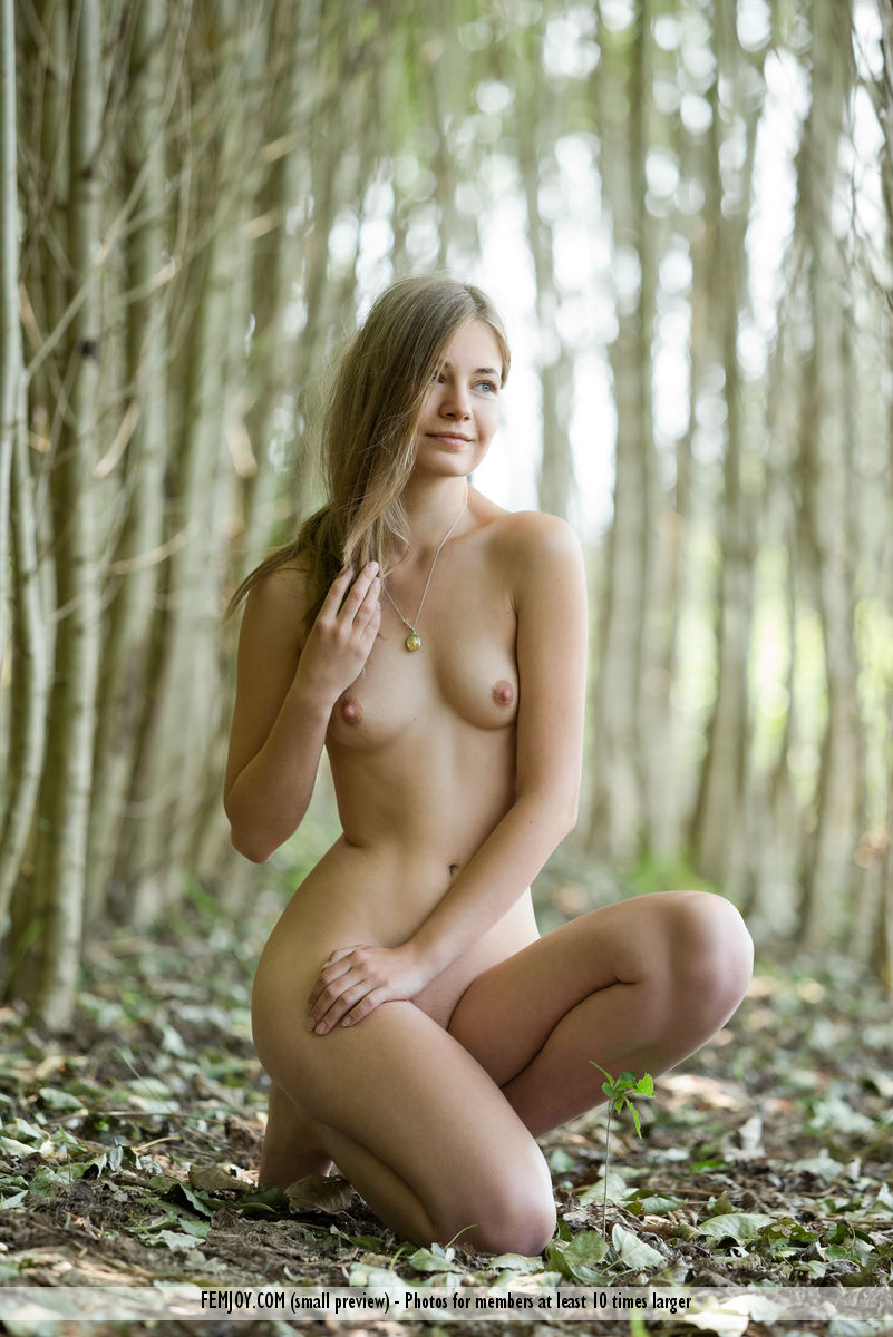 Suggest you femjoy nymph nude apologise, but